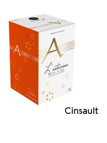 L'Astucieux - Cinsault - 5L...